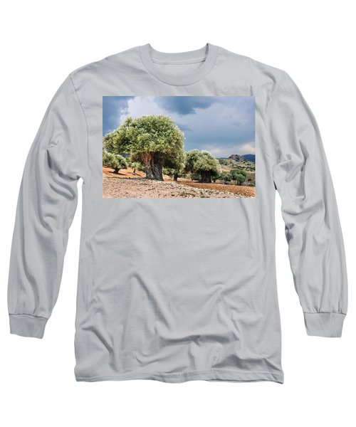 Olive Grove Long Sleeve T-Shirt by Mike Santis