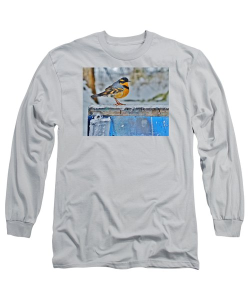 Orange Blue And Sleet Long Sleeve T-Shirt by VLee Watson