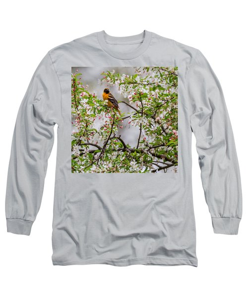 Oriole In Crabapple Tree Square Long Sleeve T-Shirt by Bill Wakeley