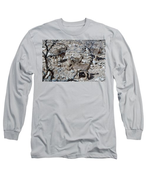 Out Of Africa  Mountain Goats Long Sleeve T-Shirt