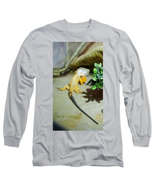 Out Of Africa Orange Lizard 2  Long Sleeve T-Shirt