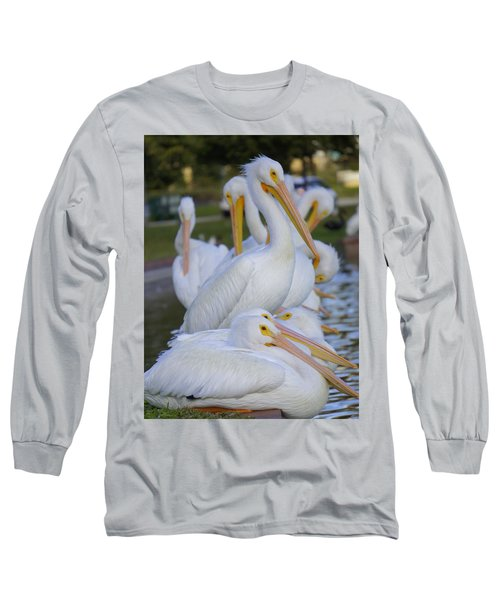 Pelican Pile Long Sleeve T-Shirt