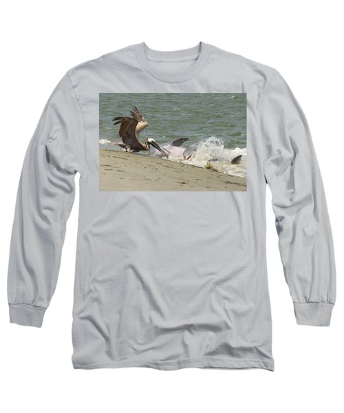Pelican Steals The Fish Long Sleeve T-Shirt