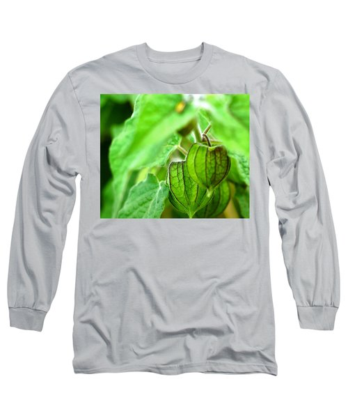 Poha Berry Lanterns Long Sleeve T-Shirt