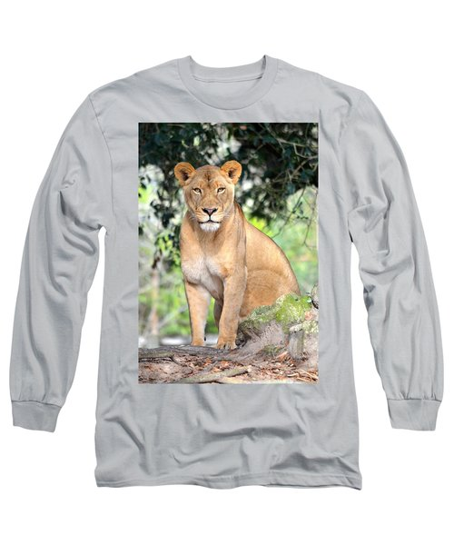 Portrait Of A Proud Lioness Long Sleeve T-Shirt by Richard Bryce and Family