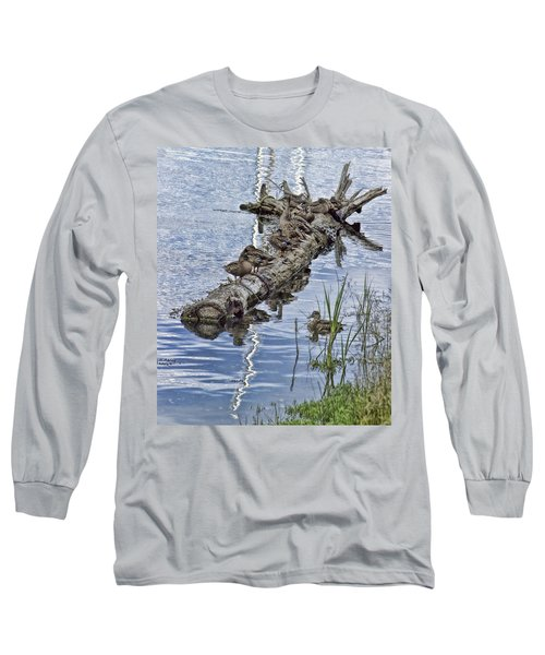 Raft Of Ducks Long Sleeve T-Shirt by Cathy Anderson