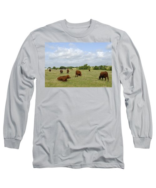 Long Sleeve T-Shirt featuring the photograph Red Angus Cattle by Charles Beeler