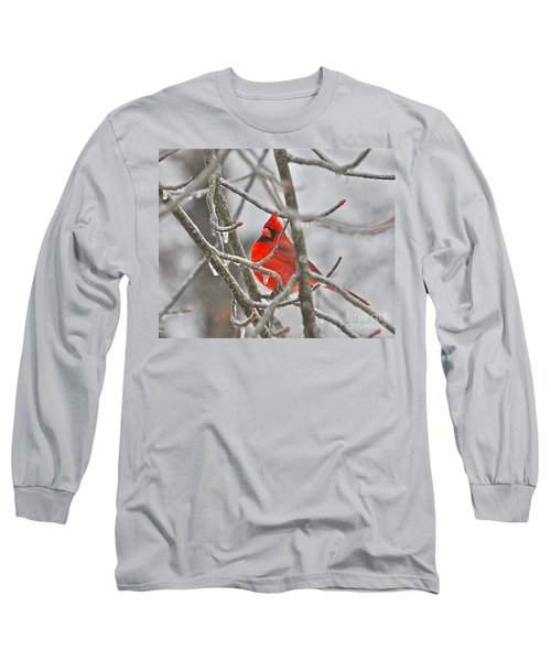 Red Cardinal Northern Bird Long Sleeve T-Shirt by Peggy Franz