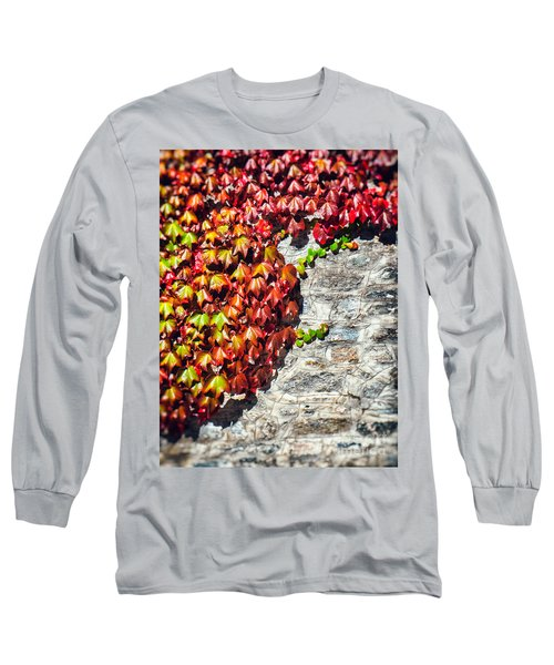 Long Sleeve T-Shirt featuring the photograph Red Ivy On Wall by Silvia Ganora