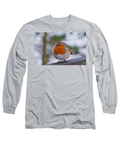 Robin 1 Long Sleeve T-Shirt