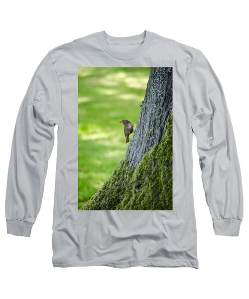 Robin At Rest Long Sleeve T-Shirt by Spikey Mouse Photography
