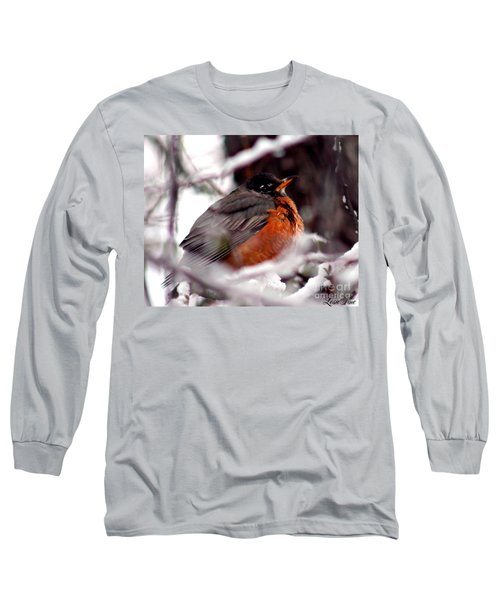 Long Sleeve T-Shirt featuring the photograph Robins' Patience by Lesa Fine