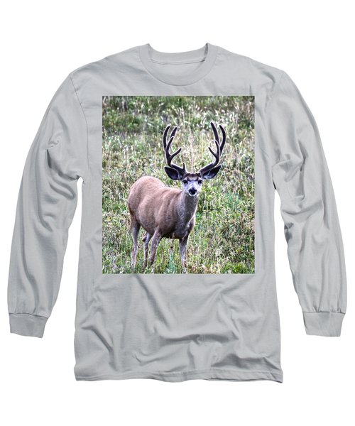 Rocky Mountain Buck Long Sleeve T-Shirt