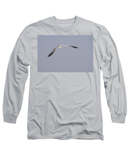 Long Sleeve T-Shirt featuring the photograph Seagull In Flight Against A Blue Sky by Charles Beeler
