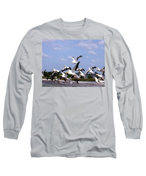 Snowbirds Heading South Long Sleeve T-Shirt