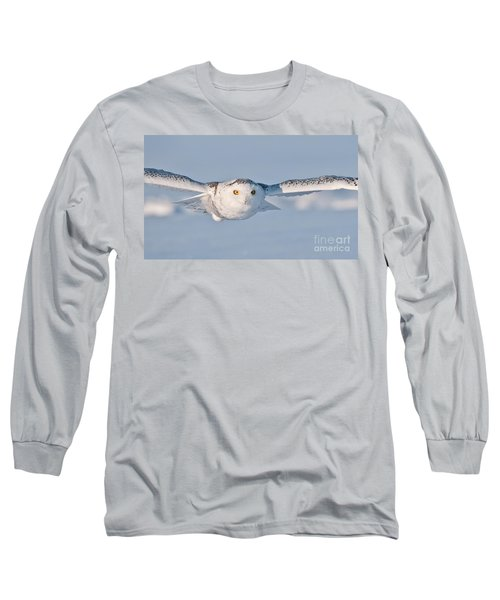 Snowy Owl Pictures 10 Long Sleeve T-Shirt