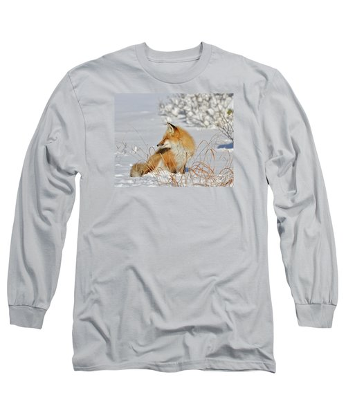 Long Sleeve T-Shirt featuring the photograph Soaking Up The Sun by Sami Martin