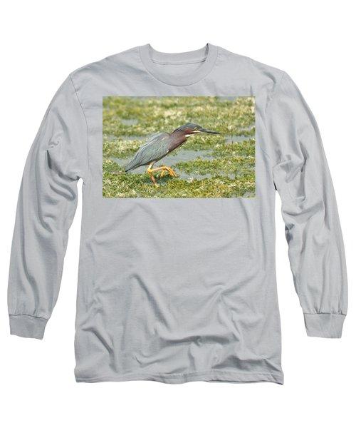 Still Looking Long Sleeve T-Shirt