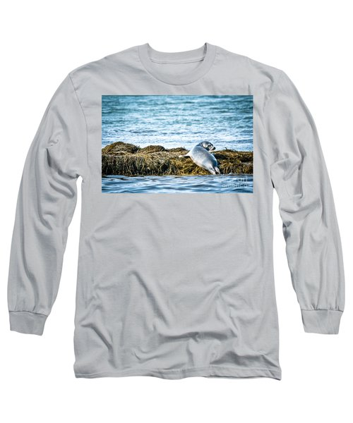 Sweet Seal Long Sleeve T-Shirt