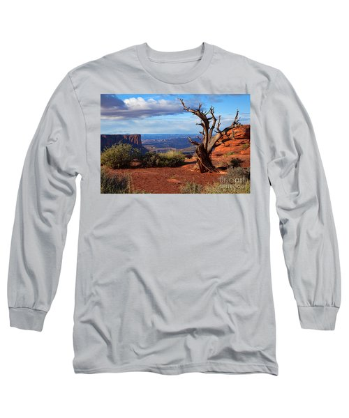 The Watchman Long Sleeve T-Shirt by Jim Garrison