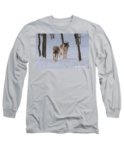 Long Sleeve T-Shirt featuring the photograph Timber Wolf Pair  by Wolves Only