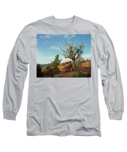 Tree In The Rocks Long Sleeve T-Shirt