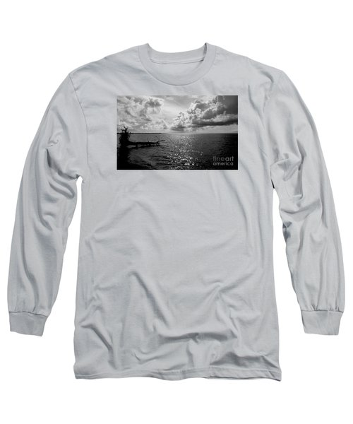 Treefall Long Sleeve T-Shirt by Amar Sheow