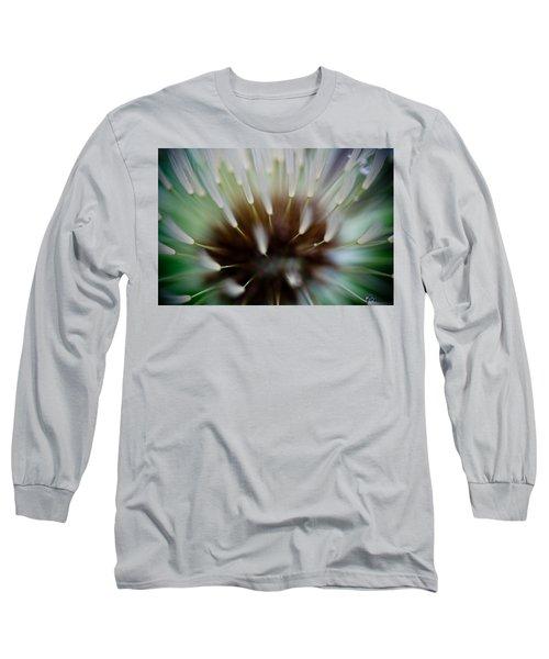 Undersea Dream Long Sleeve T-Shirt by Shane Holsclaw