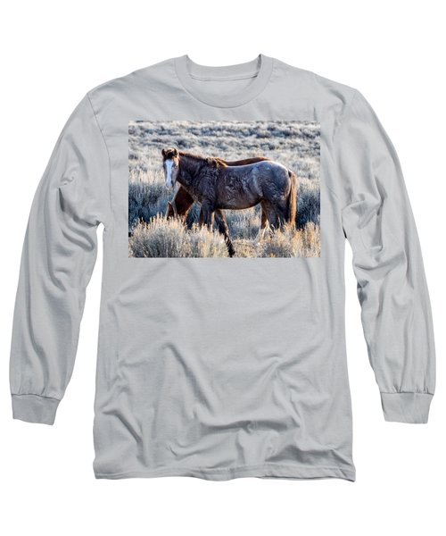 Velvet - Young Colt In Sand Wash Basin Long Sleeve T-Shirt