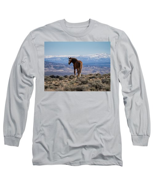 Wild Stallion Of Sand Wash Basin Long Sleeve T-Shirt