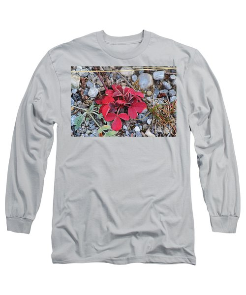 Long Sleeve T-Shirt featuring the photograph Wild Strawberry by Ann E Robson