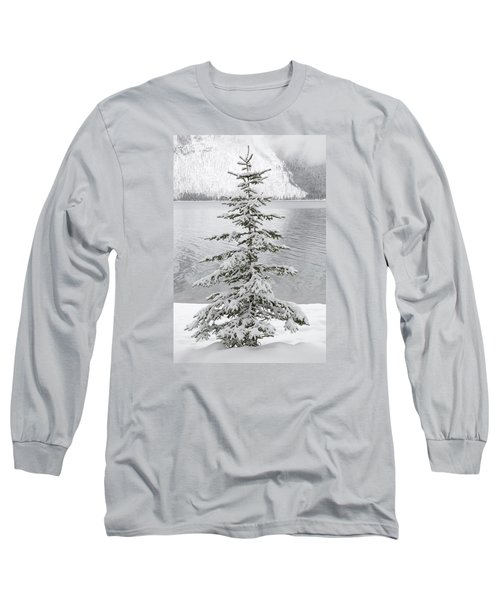 Winter Decor Long Sleeve T-Shirt by Diane Bohna