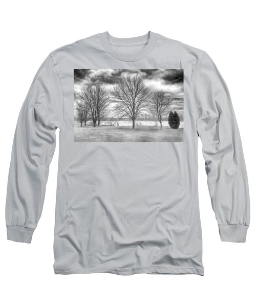 Winter Trees Long Sleeve T-Shirt by Howard Salmon