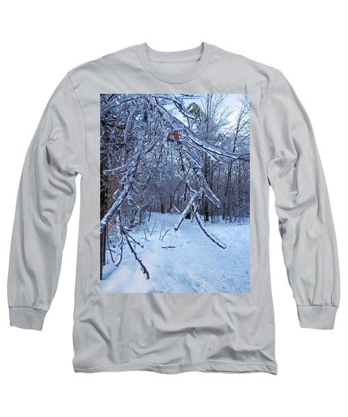 Winter's Day Long Sleeve T-Shirt