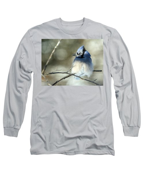 Winter's Jay Long Sleeve T-Shirt