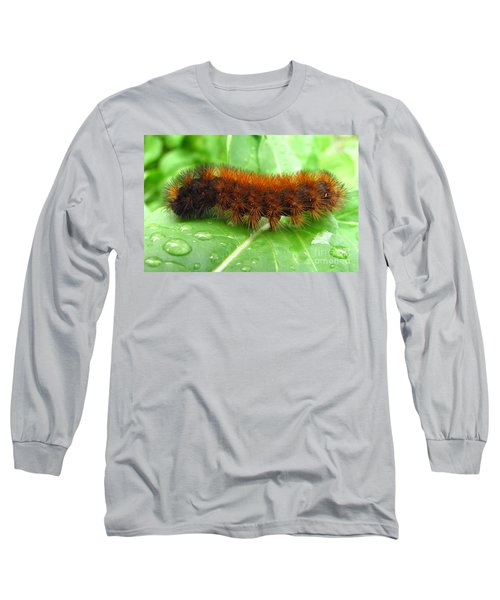 Wooly Bear  Long Sleeve T-Shirt