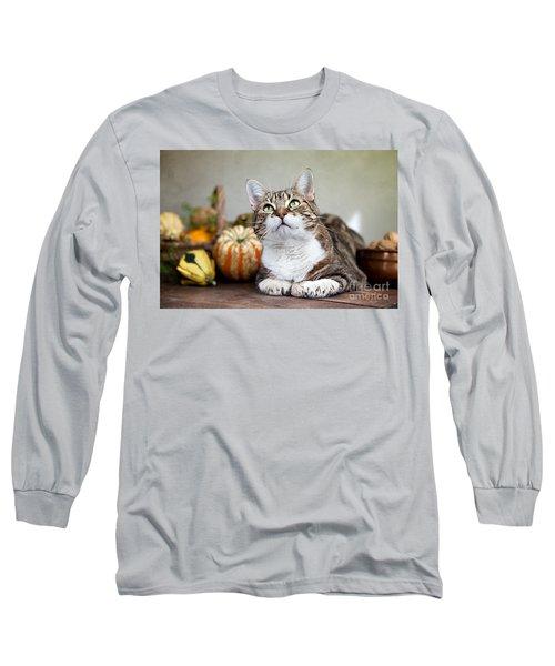 Cat And Pumpkins Long Sleeve T-Shirt