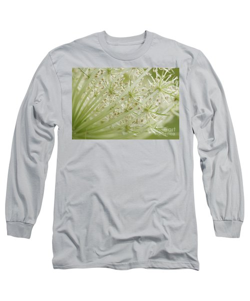 Queen Anne's Lace Long Sleeve T-Shirt