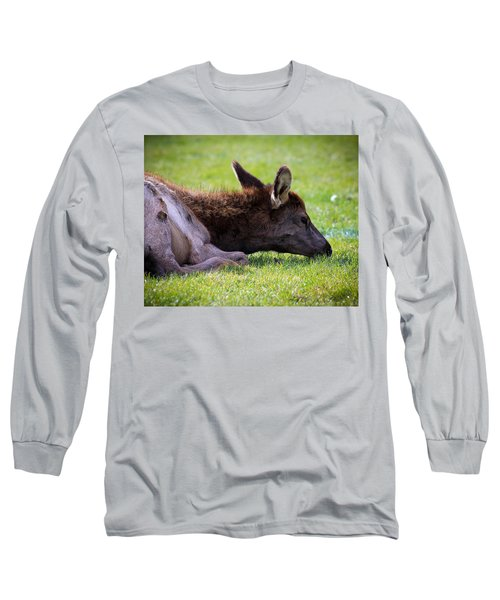 Long Sleeve T-Shirt featuring the photograph Baby Elk by Steve McKinzie