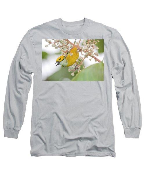 Bird With Berry Long Sleeve T-Shirt