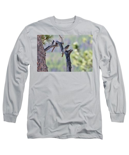 Building Her Nest Long Sleeve T-Shirt