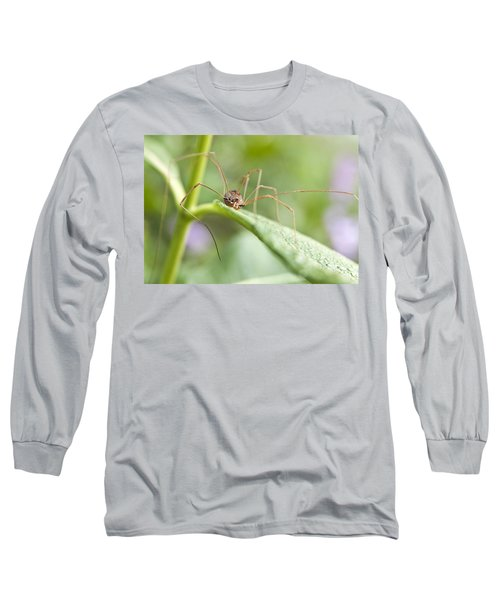 Long Sleeve T-Shirt featuring the photograph Creepy Crawly Spider by Jeannette Hunt