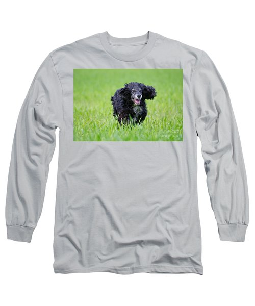 Dog Running On The Green Field Long Sleeve T-Shirt