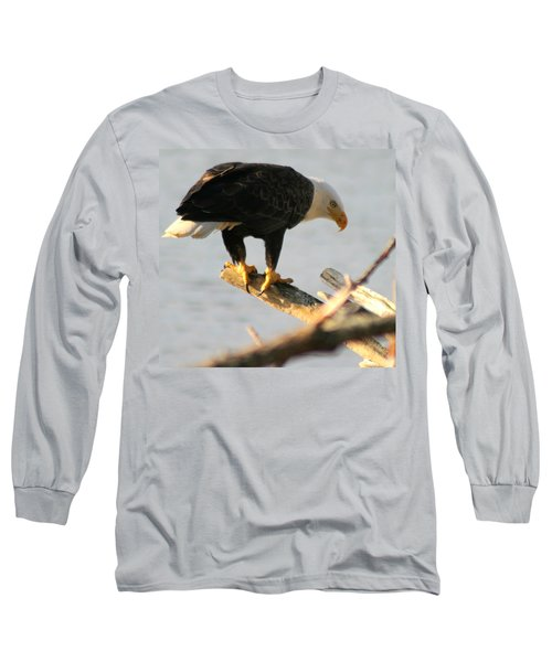 Long Sleeve T-Shirt featuring the photograph Eagle On His Perch by Kym Backland