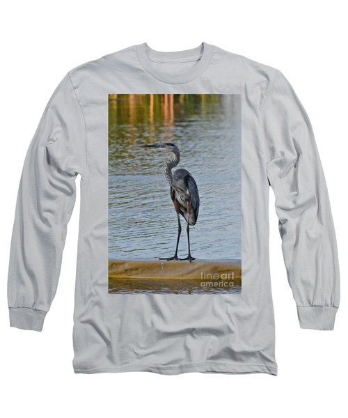 Long Sleeve T-Shirt featuring the photograph Great Blue Heron by Carol  Bradley