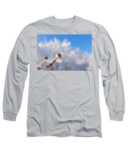 Iced Dogwood Long Sleeve T-Shirt