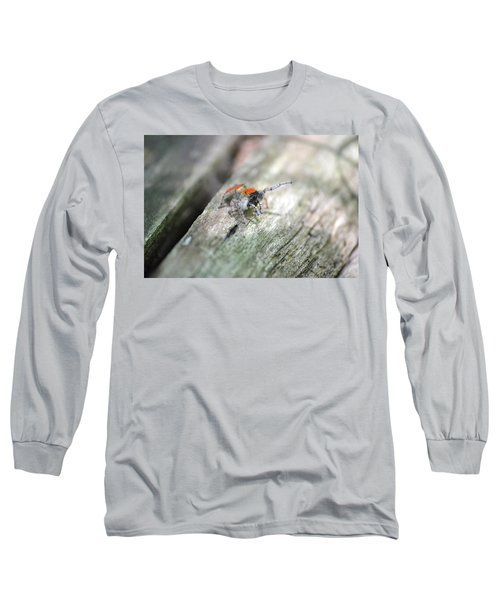 Little Jumper Long Sleeve T-Shirt by JD Grimes