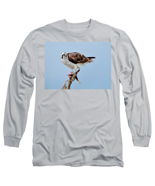 Osprey In The Morning Long Sleeve T-Shirt