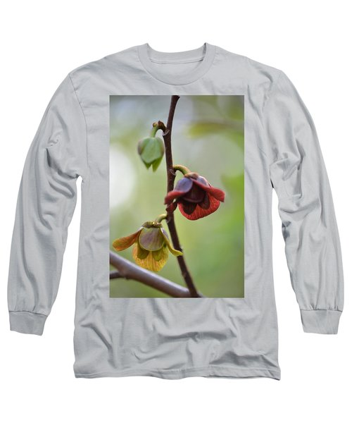 Paw-paw Flowers Long Sleeve T-Shirt