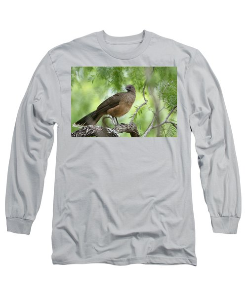 Plain Chachalaca  Long Sleeve T-Shirt